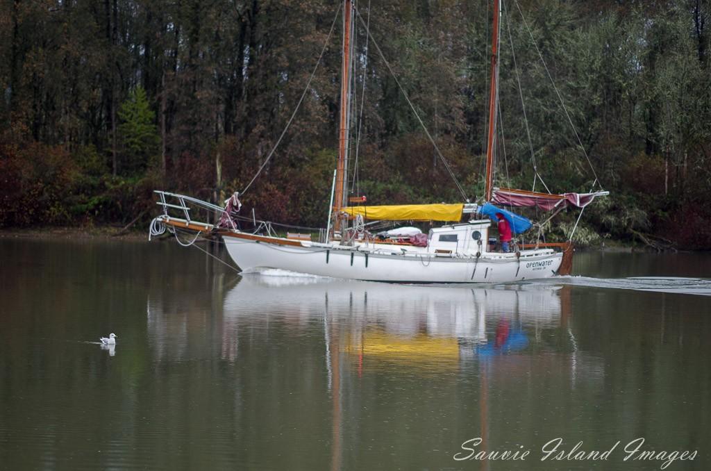Sauvie-Island-24