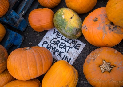Welcome Great Pumpkin