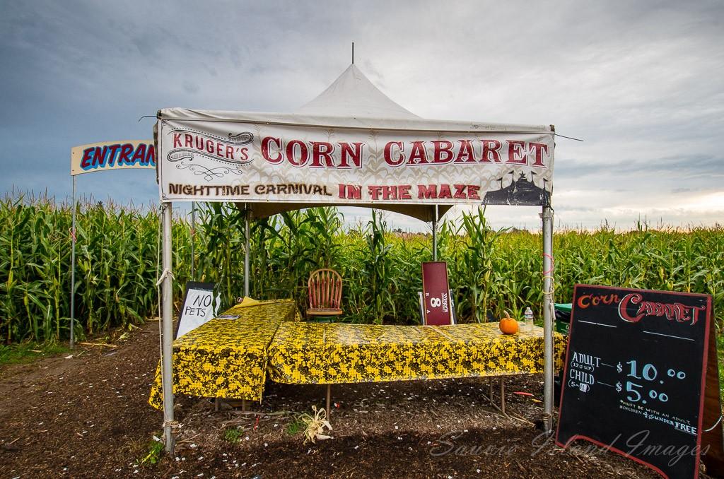 Sauvie Island corn maze