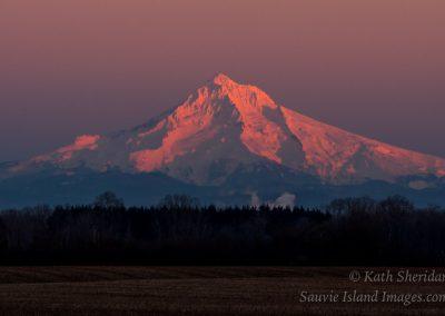 Mt_Hood_Sunset